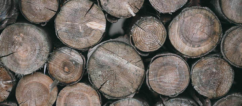 Woodoo – WoodQuoi ?