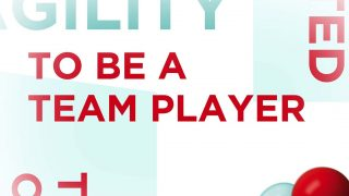 Leadership Model by Assystem : To be a team player (4/7)